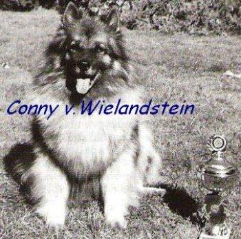 Conny v. Wielandstein