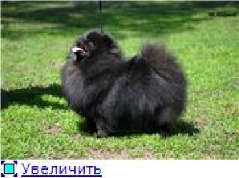 Азсогдиен Юлдуз-Ханум