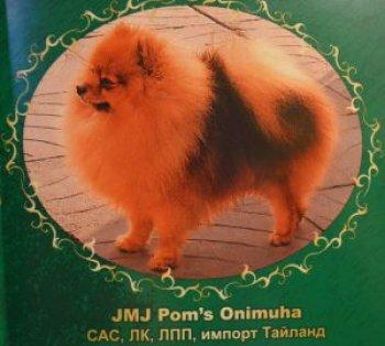 G.m.g.pom's Onimucha