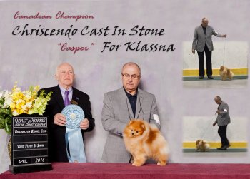 Chriscendo Cast In Stone For Klassna