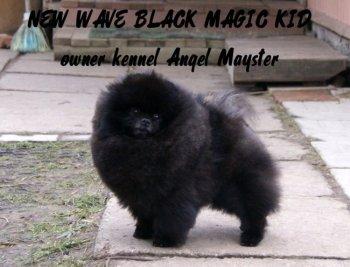 New Wave Black Magic Kid