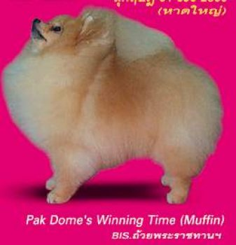 Pak Dome's Winning Time