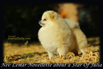 Nev Lemar Novellette About A Star Of Julia